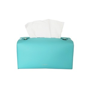 FINECHI TISSUE CASE - AQUA MINT